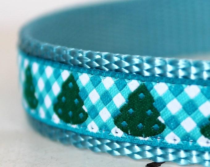 Gingham Christmas Trees, Aqua Blue Gingham, Adjustable Holiday Pet Collar