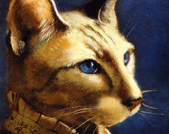 Born to Amsterdam - cat prints
