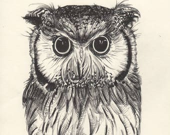 Original owl ink drawing, birds of prey, forest animals, wildlife, painting, art, Sketchbook, Black and White