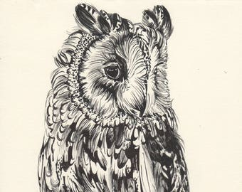 Original owl ink drawing, inktober, painting, art, birds of prey, forest animals, Black and White