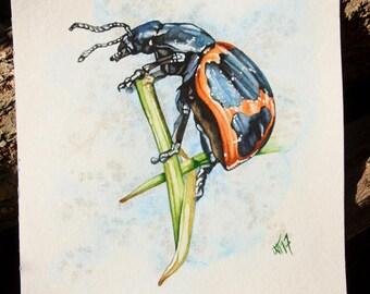 Insect art, natures Art, Original painting, beetles, bugs, ladybugs, garden, watercolors, natural science drawing, boho
