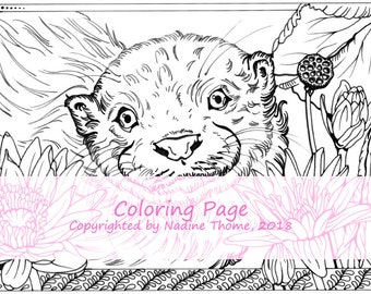 Hand drawn Coloring Page Otter and Lotus, coloring sheet, flowers, animals, wildlife, water, illustration, art, gray, black and white