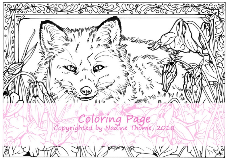 Coloriage Foret Renard.A La Main Dessine Coloriage Page Renard Et Colombine Gris Etsy