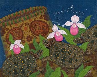 "Turtle - Mihkinâhk Print (11""x14"")"
