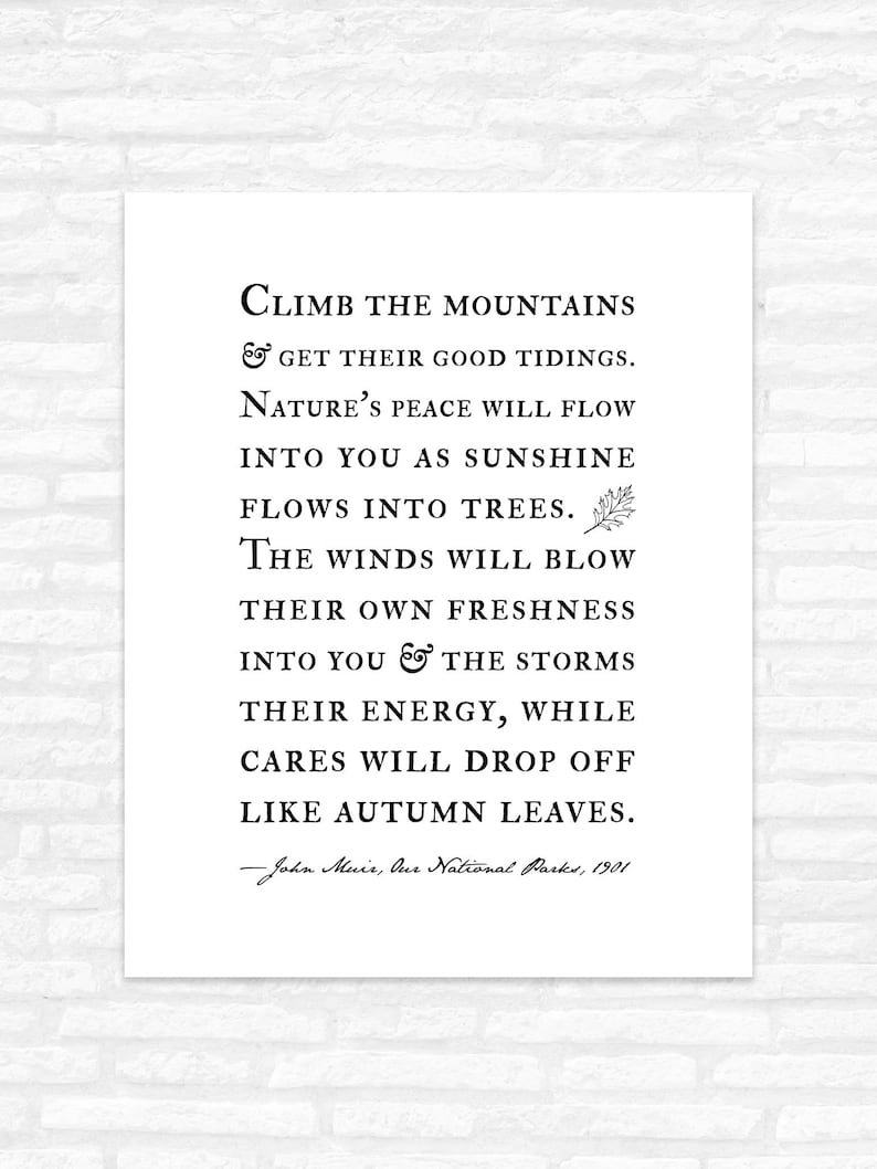 John Muir Wall Art Nature Quotes Climb The Mountains Etsy