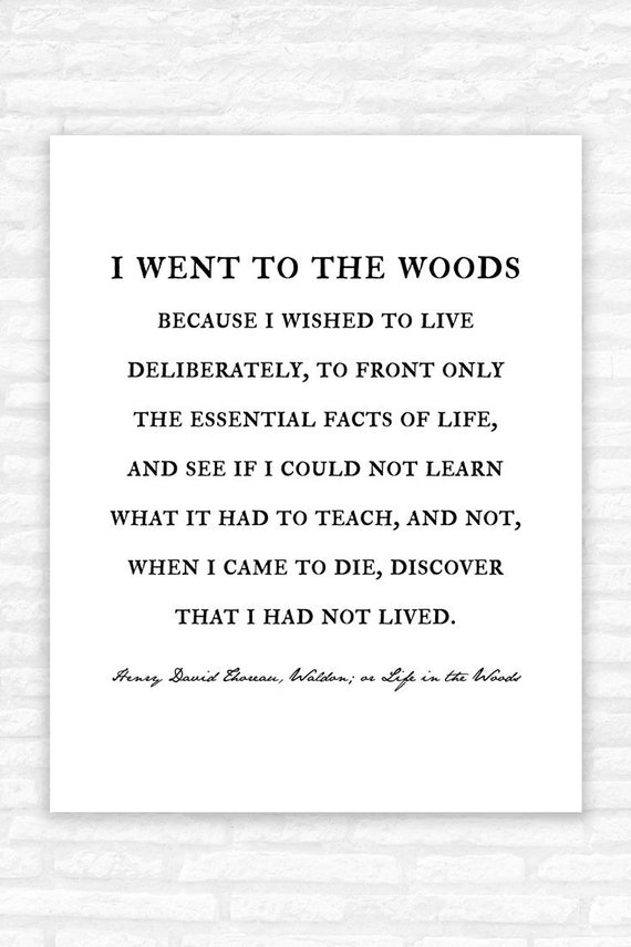 henry david thoreau book quote wall art walden life in the
