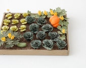 "1/24th Spring Cabbage Paper Vegetable Kit for 1/2"" scale Dollhouses, Florists and Miniature Gardens"