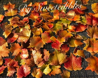 Autumn Gum Paste Fall  Edible Leaves for Cake Decorating
