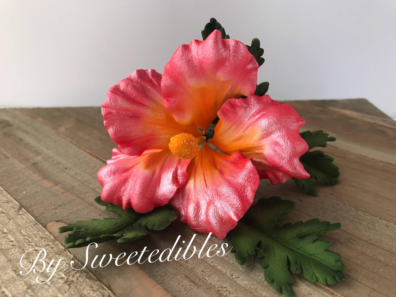 Gum paste hawaiian hibiscus flower cake decorations pink gumpaste 1 izmirmasajfo