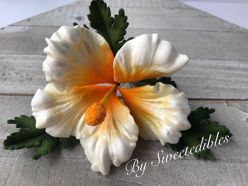Gum Paste Hawaiian Hibiscus Flower Cake Decorations White Etsy