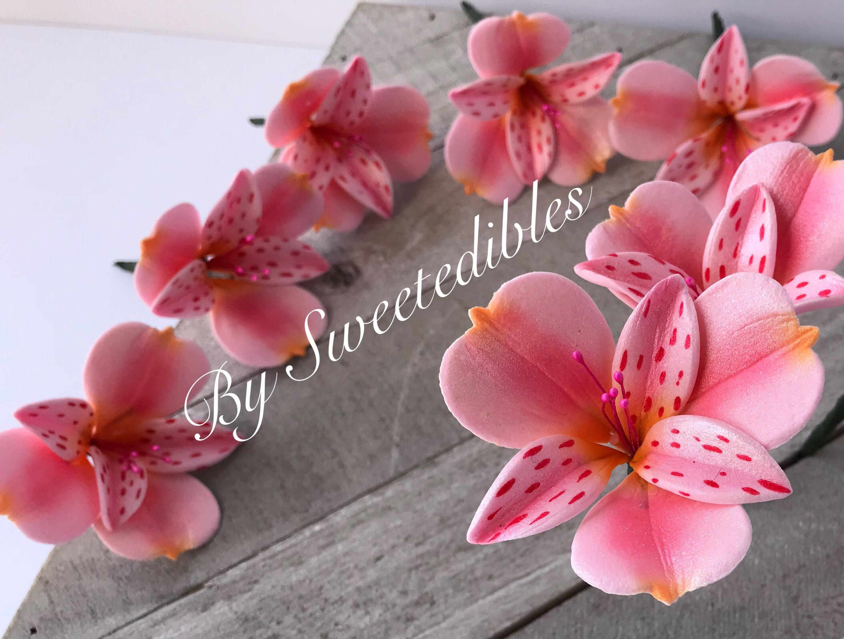 Alstroemeria Flower For Cake Decorating Gum Paste Pink Etsy