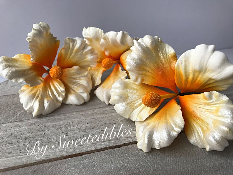 Gum Paste Hawaiian Hibiscus Flower Cake Decorations White Fondant Flower Gumpaste