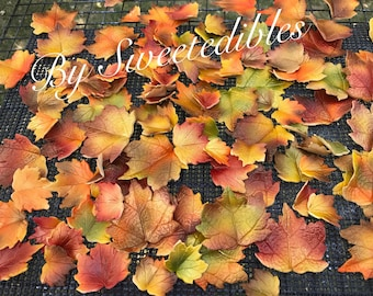 Gum Paste Fall Leaves Edible Cake Decorations