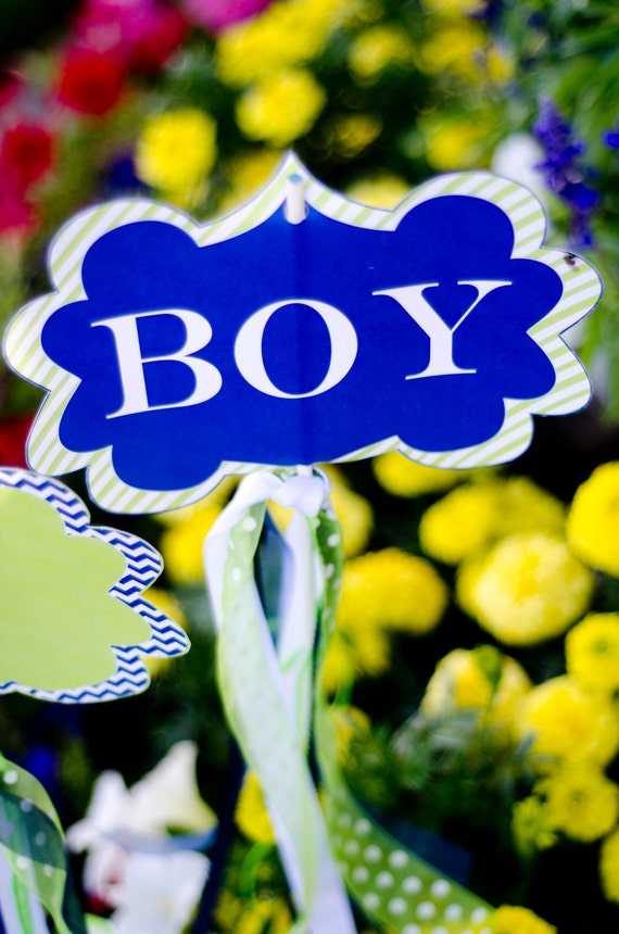 photo regarding Printable Yard Signs referred to as Its A Boy Kid Shower PRINTABLE Backyard Indicators (Prompt
