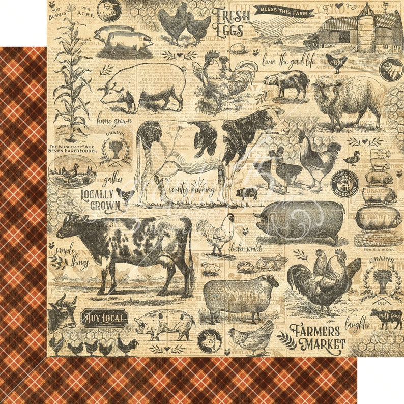 Graphic 45 Farmhouse 12 x 12  Paper Collection Pack