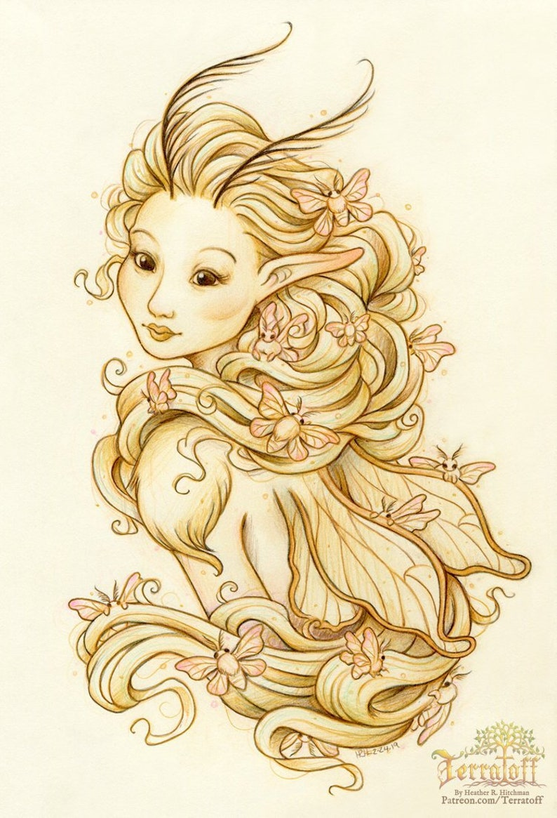 Silk Moth Original Colored Pencil Graphite Drawing on Moleskine Fairy Art Silk Moth Seelie Fae Faerie Art Fairy Illustration