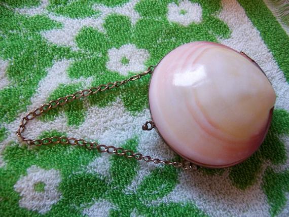 purse / sea shell coin purse