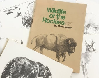 "Vintage Dan Feaser ""Wildlife of the Rockies"" Prints - Set of 5 - 9"" X 12"" Prints with Original Presentation Folder - FREE USA SHIPPING"