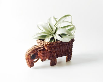Vintage Rattan Elephant Basket Planter