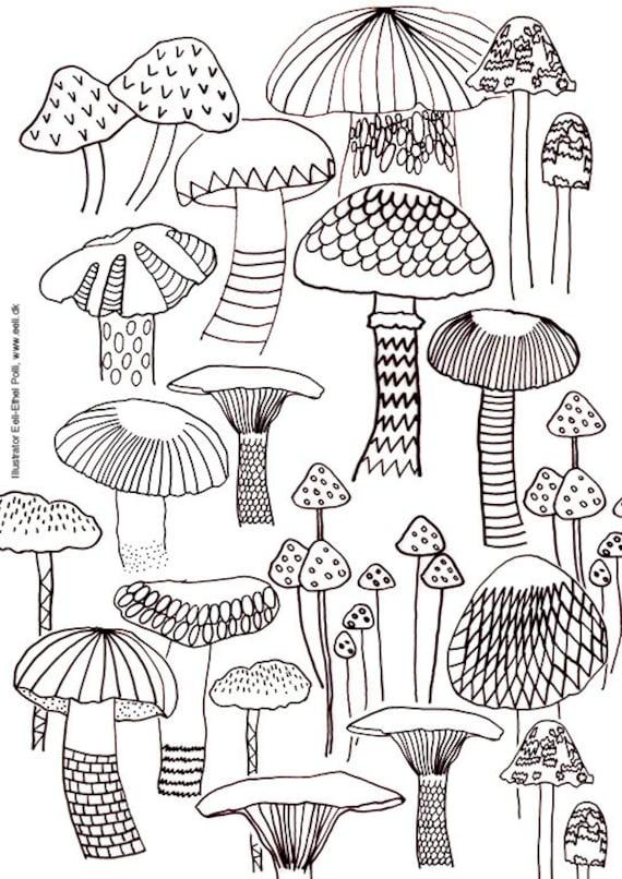 Mushroom Coloring Sheets Nature Mushrooms Instant Printable Etsy