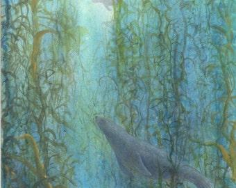 seal 8x10 print bowman ocean wildlife The Intruder nature sea wall art decor open edition reproduction