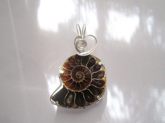 Ammolite Ammonite Natural Stone Sterling Silver Wire Art Pendant Reversible