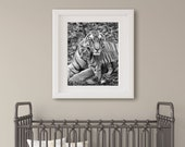 Baby Animal Nursery Art /...