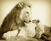 BABY LION and DAD, Vintag...