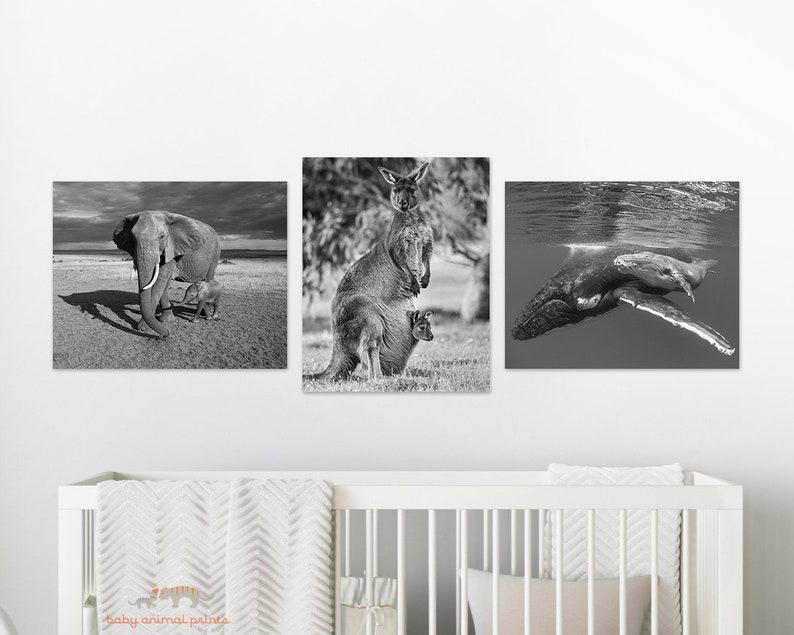 Ocean Nursery Art  Baby Whale  Animal Nursery Decor  Ocean Animals  Whale Art  Ocean Baby Shower  Baby Animal Print  Ocean Wall Art