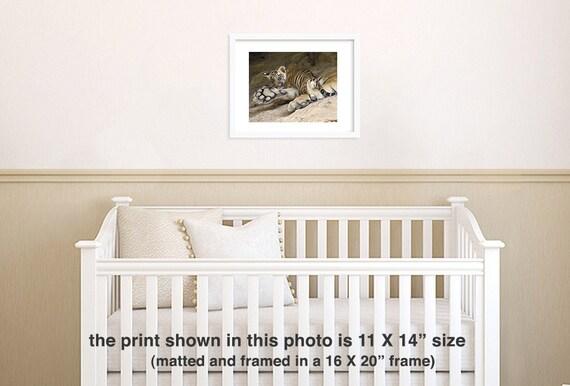 Tigre Bebé Foto Decoración De Cuarto De Niños De Safari Animales Fotografía Fotografía De Vida Silvestre Animales Bebé Vivero Arte Kids Room