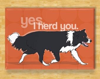 Border Collie Magnet - Yes I Herd You - Border Collie Gifts Funny Dog Fridge Magnets