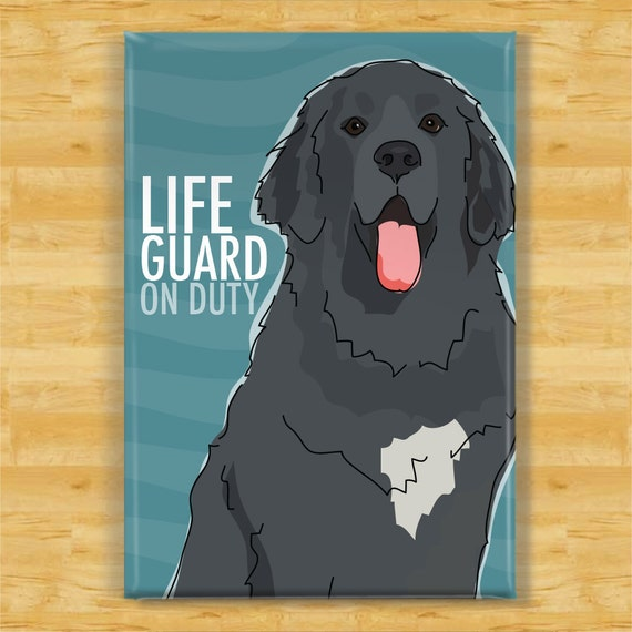 NEWFOUNDLAND Can/'t Have Just One FRIDGE MAGNET Newfie