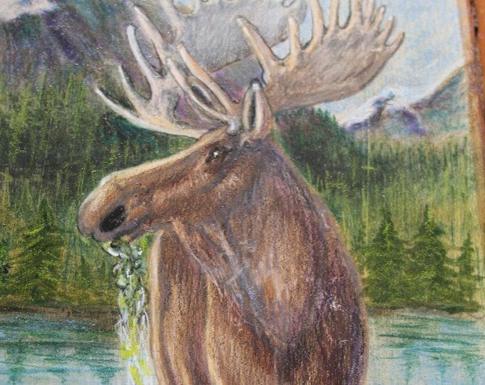 Bull Moose Munching Lake Plants- Original Painting on Montana Larch Plank