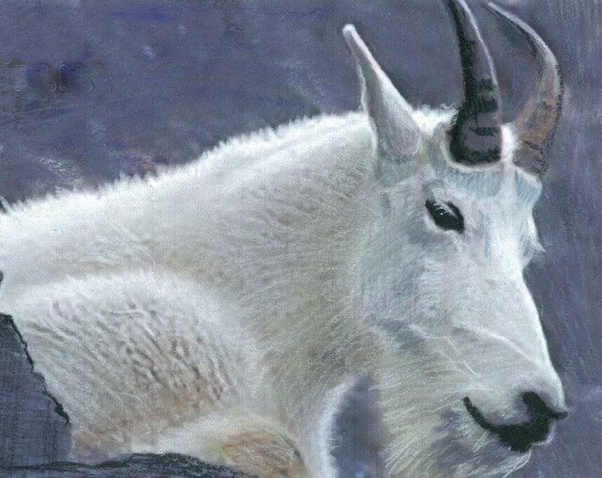 Montana Mountain Goat - Original Painting Prints Canvas/ThinWrap -See Separate Listing for Greeting Cards