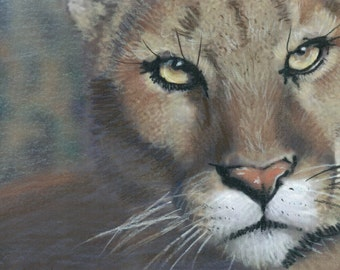 The Eyes Have It- Original Prismacolor Portrait of A Cougar- Prints (See Separate Listing for Greeting Cards and Photo Prints)
