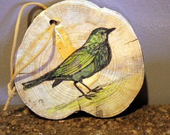 Green Bird Original Prismacolor Painting on Larch Wood Slice