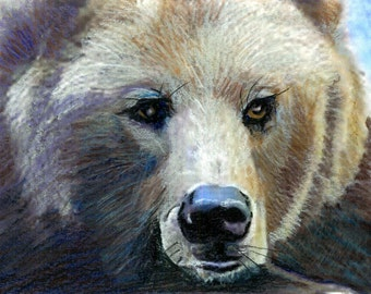 Grizzly Girl From Montana -Original Prismacolor Painting - Grizzly Bear Prints (See Separate Listing for Greeting Cards and Photo Prints)