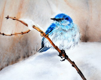 Early Arrival  - Bluebird in the Snow - Canvas or ThinWrap Prints (See Separate Listing for Greeting Cards and Photo Prints)