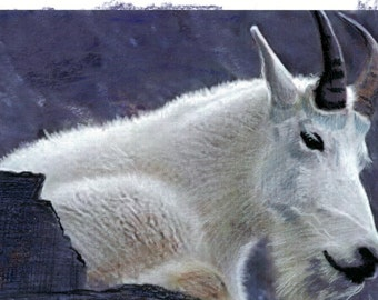 Hand Made Greeting Cards/Envelopes  -Montana Mountain Goat Billy - Prismacolor Original Painting-  See Also Larger Prints Listing
