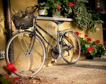 Bici Note Card