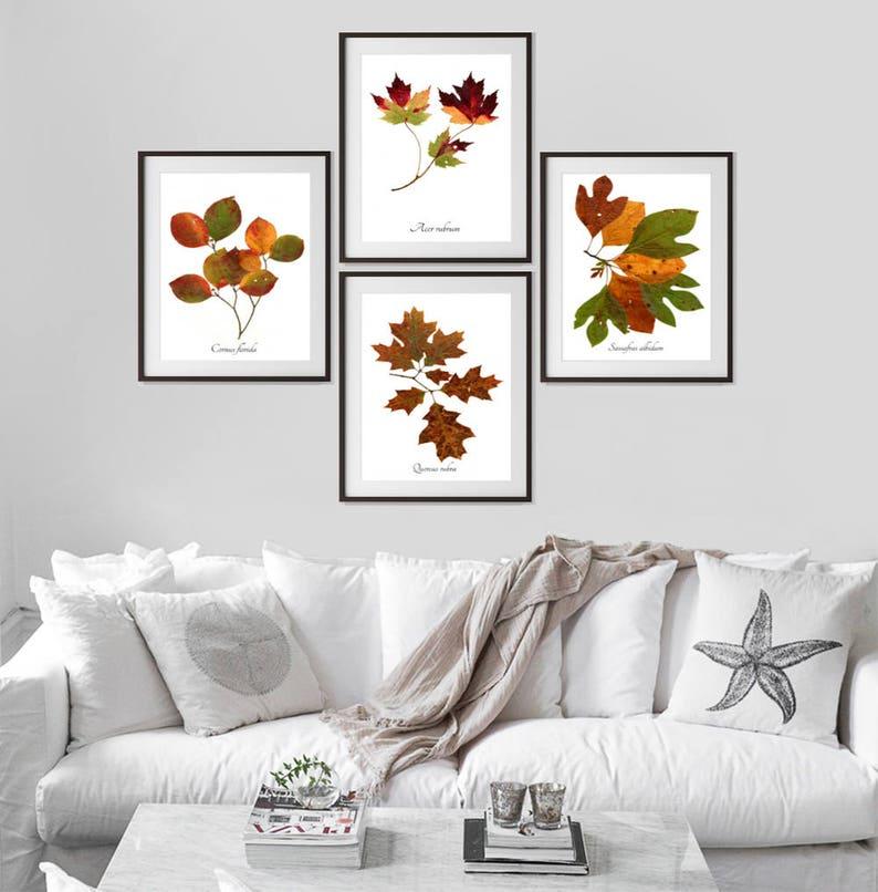 Autumn Leaves Botanical Print Set  4 Fall Tree Leaves Art image 0