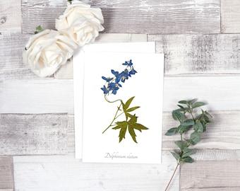 Blue Delphinium Botanical Greeting Card - Blank Greeting Card - A7