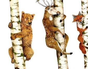 Print Bear, Deer, Fox, Trees illustration Print 8x11