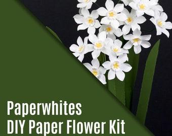 The Paperwhites - December Flower - DIY Kit
