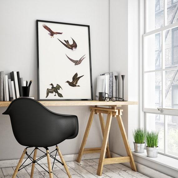 Bird Wall Art, Bird Gift, Nature Print - Holding Pattern