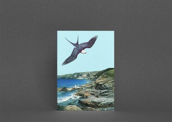 Bird Greetings Card, Boyfriend Card - Human Prey