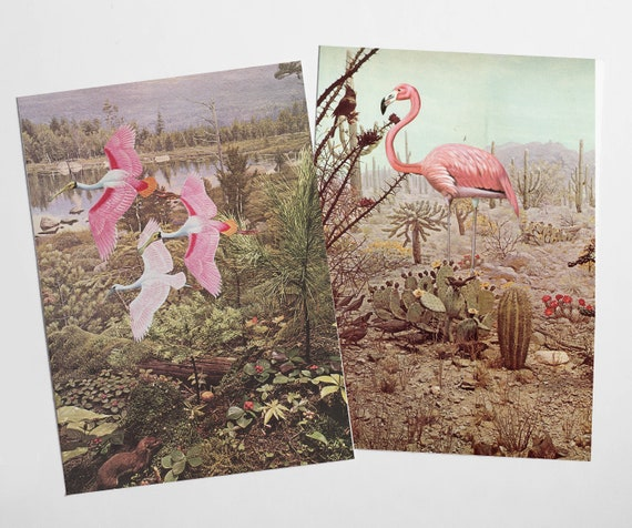 Bird Postcard Set, Best Friend Gift - Wild Birds
