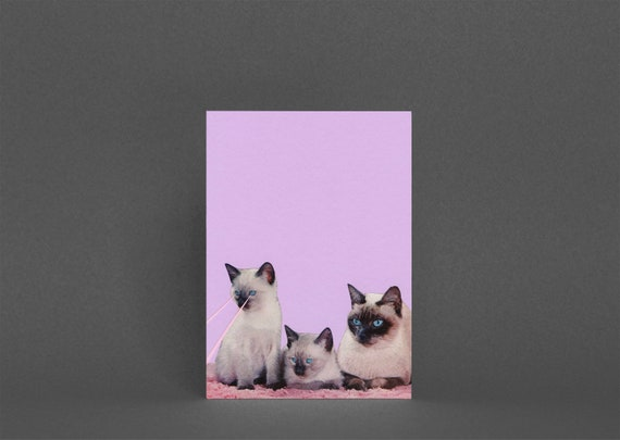 Kitsch Cat Card, Blank Greetings Card - Distracted