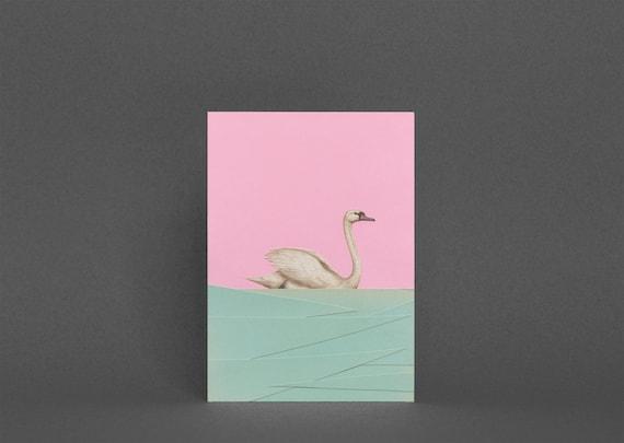 Swan Card, Blank Greetings Card - Spring Swan