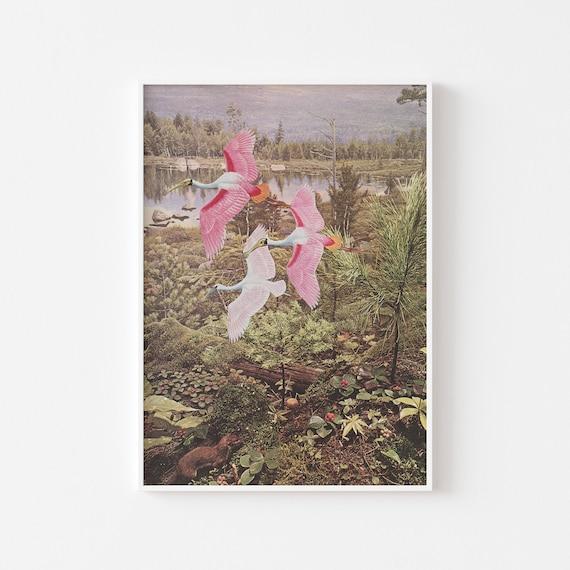 Spoonbill Print, Bird Art, Gifts for Bird Lovers - Flight of the Spoonbills